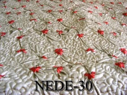 NEDE-30