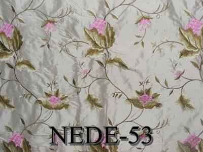 NEDE-53